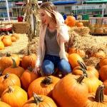 Fall Favorites Tag!